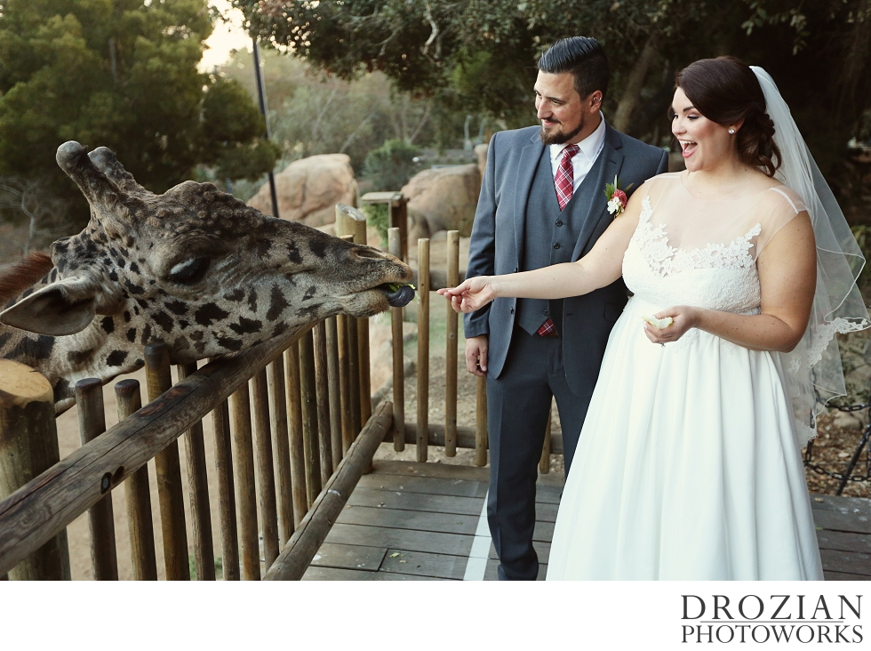 Santa-Barbara-Zoo-Wedding-027